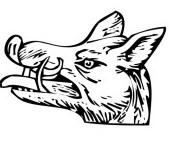La cabeza de Jabalí en los Escudos de Armas